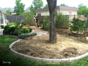 ... Drip Tube System To Aid Water Conversation. This System Waters The  Roots Decreasing The Amount Of Water Used. We Also Installed The Entire  Landscape.